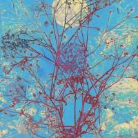 I quadri di Paolo Guiotto 53