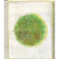 Le carte di Paolo Guiotto 17