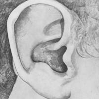 emersione-allarmata---Olio-1967